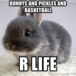 ADHD Bunny - bunnys and pickles and basketball r life