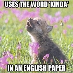 Baby Insanity Wolf - uses the word 'kinda' in an english paper