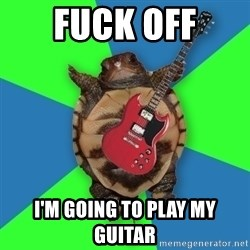 Aspiring Musician Turtle - Fuck off I'm going to play my guitar
