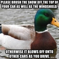 Actual Advice Mallard 1 - Please brush the snow off the top of your car as well as the windshield. Otherwise it blows off onto other cars as you drive.