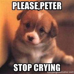 cute puppy - please,peter stop crying