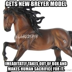 Typical horse model collector - gets new breyer model imeaditatly takes out of box and makes human sacrifice for it.