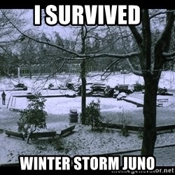 UVIC SNOWDAY - I SURVIVED WINTER STORM JUNO