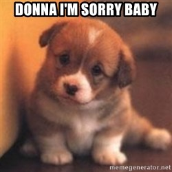 cute puppy - Donna I'm Sorry Baby