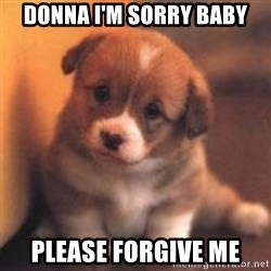 cute puppy - Donna I'm Sorry Baby Please forgive me