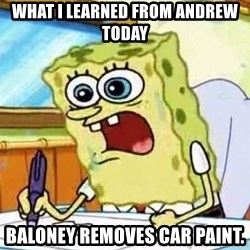 Spongebob What I Learned In Boating School Is - WHAT I LEARNED FROM ANDREW TODAY BALONEY REMOVES CAR PAINT.