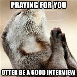 Praying Otter - Praying for you Otter be a good interview