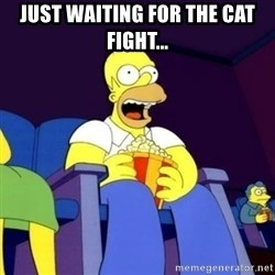 Homer Simpson Popcorn - Just waiting for the cat fight...