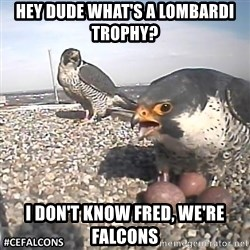 #CEFalcons - Hey dude what's a lombardi trophy? I don't know fred, we're falcons