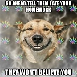 Stoner Dog - go ahead.tell them I ate your homework they won't believe you