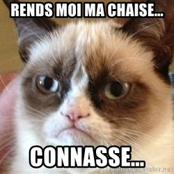 Angry Cat Meme - Rends moi ma chaise... Connasse...