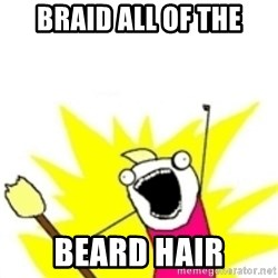 x all the y - BRAID ALL OF THE BEARD HAIR