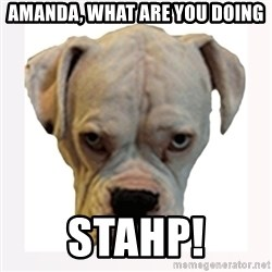 stahp guise - Amanda, what are you doing Stahp!