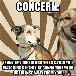 Stoner dogs concerned friend - Concern: If any of your OG brothers catch you watching GH, they're gonna take your OG license away from you!