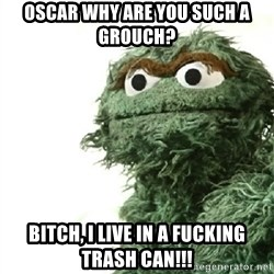 Sad Oscar - Oscar why are you such a grouch? Bitch, I live in a fucking trash can!!!