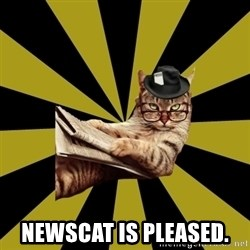 Frustrated Journalist Cat -  Newscat is pleased.
