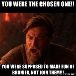You were the chosen one  - you were the chosen one!! you were supposed to make fun of bronies, not join them!!!