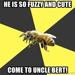 British High School Honeybee - he is so fuzzy and cute come to uncle bert!