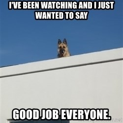 Roof Dog - I've been watching and I just wanted to say good job everyone.