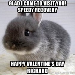 ADHD Bunny - Glad I came to visit you! Speedy Recovery Happy Valentine's Day Richard