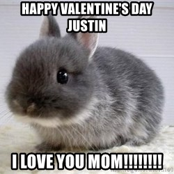 ADHD Bunny - Happy Valentine's Day Justin I Love You Mom!!!!!!!!