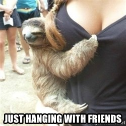Perverted Sloth -  Just Hanging With Friends