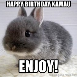 ADHD Bunny - Happy Birthday Kamau Enjoy!