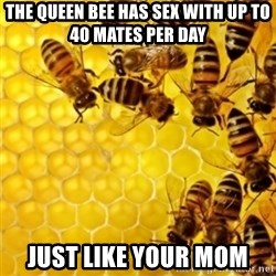 Honeybees - The Queen Bee has sex with up to 40 mates per day Just like your mom