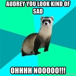 Obvious Question Ferret - Audrey You look kind of sad OHHHH NOOOOO!!!