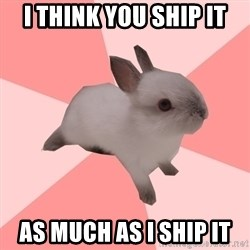 Roleplay Shipper Bunny - I think you ship it as much as I ship it