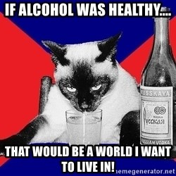 Alco-cat - If alcohol was healthy.... That would be a world I want to live in!