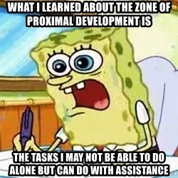 Spongebob What I Learned In Boating School Is - What I learned about the zone of proximal development is the tasks I may not be able to do alone but can do with assistance