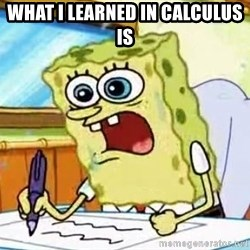 Spongebob What I Learned In Boating School Is - What I learned in calculus is