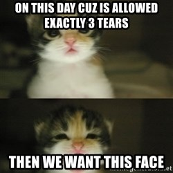 Adorable Kitten - on this day cuz is allowed exactly 3 tears  then we want this face