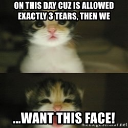 Adorable Kitten - on this day cuz is allowed exactly 3 tears, then we ...want this face!