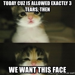 Adorable Kitten - today cuz is allowed exactly 3 tears, then we want this face