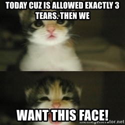 Adorable Kitten - today cuz is allowed exactly 3 tears. Then we want this face!