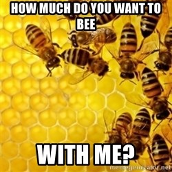 Honeybees - How much do you want to bee With me?