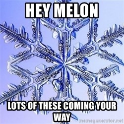 Special Snowflake meme - Hey Melon Lots of these coming your way