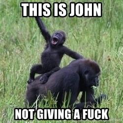 Happy Gorilla - this is john not giving a fuck