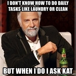 The Most Interesting Man In The World - i don't know how to do daily tasks like laundry or clean but when I do I ask Kat