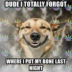 Stoner Dog - dude i totally forgot where i put my bone last night