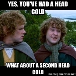 What about second breakfast? - Yes, you've had a head cold what about a second head cold