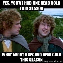 What about second breakfast? - Yes, you've had one head cold this season what about a second head cold this season