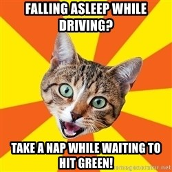 Bad Advice Cat - FALLING ASLEEP WHILE DRIVING? TAKE A NAP WHILE WAITING TO HIT GREEN!
