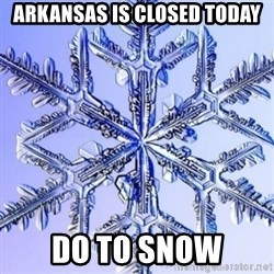 Special Snowflake meme - Arkansas is Closed Today Do to snow