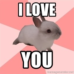 Roleplay Shipper Bunny - i love YOU