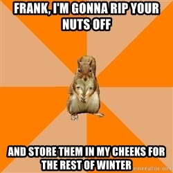 Excessively Annoyed Squirrel - Frank, I'm gonna rip your nuts off And store them in my cheeks for the rest of winter
