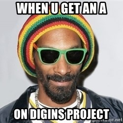 Snoop lion2 - When u get an A on digins project