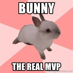 Roleplay Shipper Bunny - bunny the real MVP